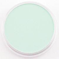 Pan Pastel PAN PASTEL PERMANENT GREEN TINT  640.8