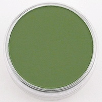 Pan Pastel PAN PASTEL CHROME OXIDE GREEN  SHADE 660.3