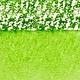 WINSOR NEWTON WINSOR & NEWTON PROFESSIONAL WATERCOLOUR STICK PERMANENT SAP GREEN