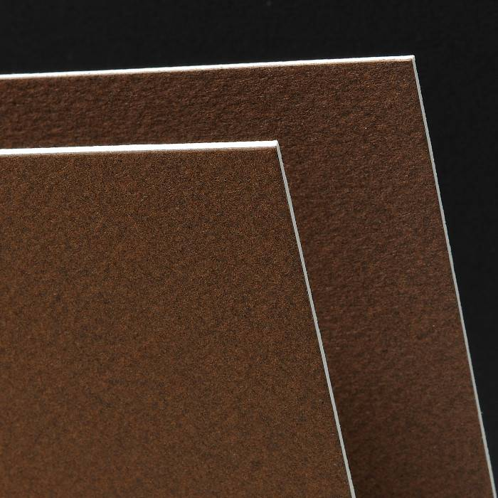 CANSON MI-TEINTES ART BOARD 501 TOBACCO 16X20    CAN-100510149