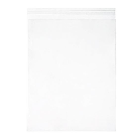 CLEARBAGS CLEAR BAG 11X14 EA