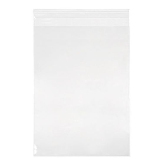 CLEARBAGS CLEAR BAG 8.5X11 EA