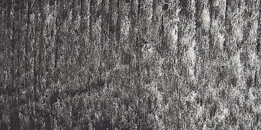 SENNELIER SENNELIER SOFT PASTEL 491 YELLOW GREY-GREEN 1