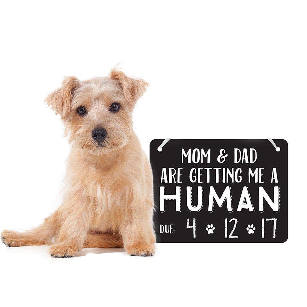 Pearhead Pearhead Pet's Baby Announcement Chalkboard