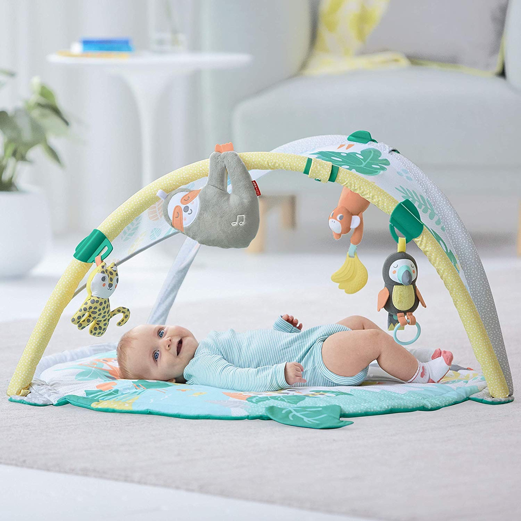 Skip Hop Skip Hop Tropical Paradise Activity Gym & Soother