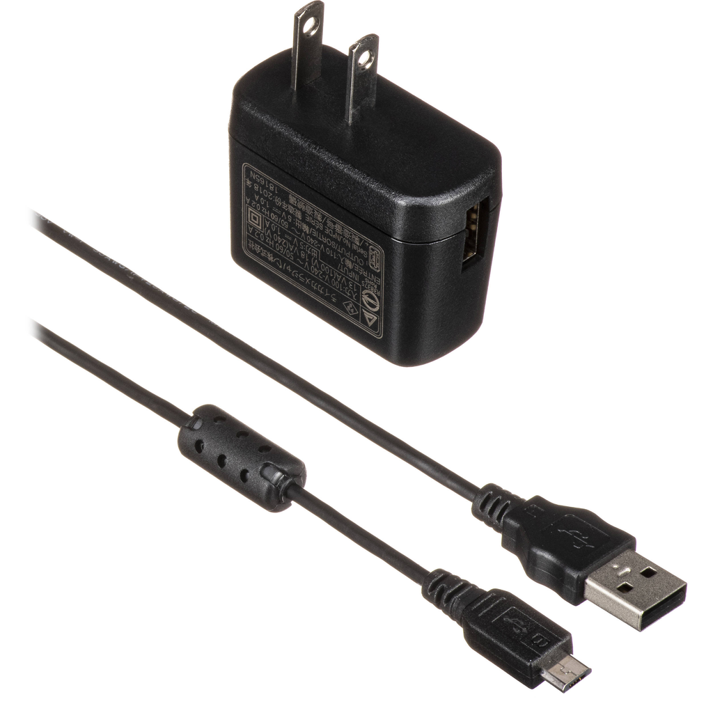Charger -D-Lux 7, C-Lux, D-Lux Typ 109 (BC-DC15)