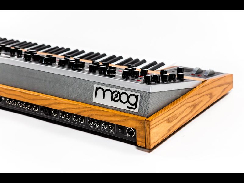 Moog The One 16 Voice