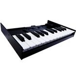 Roland K-25M Keyboard