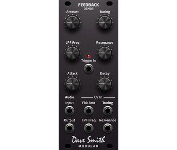 Dave Smith Instruments DSM03 Feedback Module, DEMO UNIT