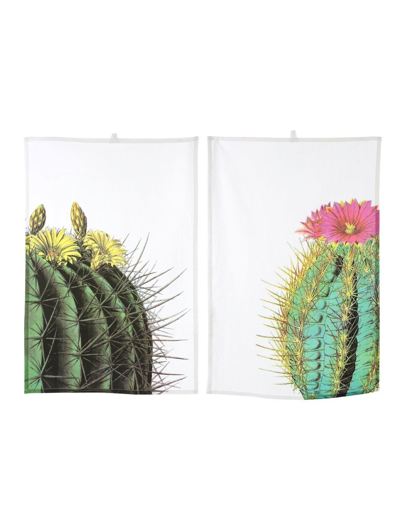 Indaba Trading Inc Cacti Tea Towels-Set of 2