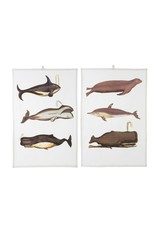 Indaba Trading Inc Deep Sea Tea Towels S/2