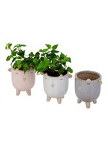 Indaba Trading Inc Little Lamb Pot-Blush