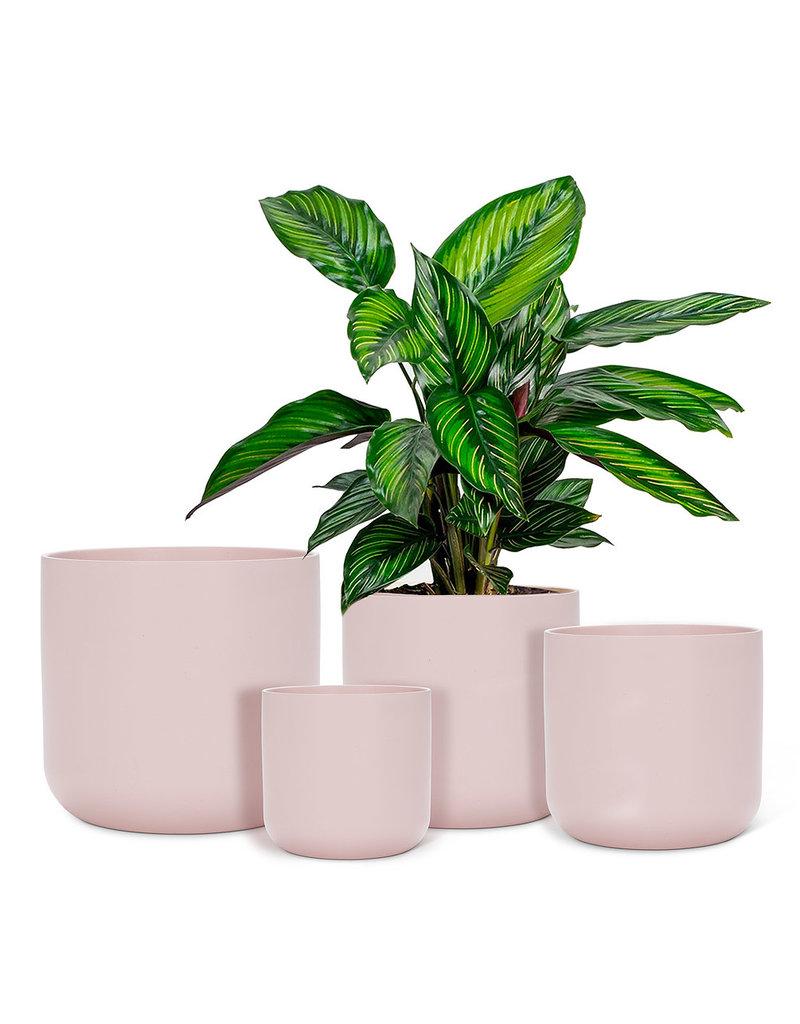 Abbott Abbott-Classic Planter-Pink-M