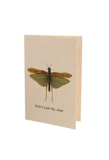 Indaba Trading Inc Don't Just Fly, Soar Card