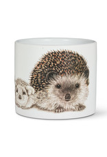 Abbott Abbott-Hedgehog Family-Planter