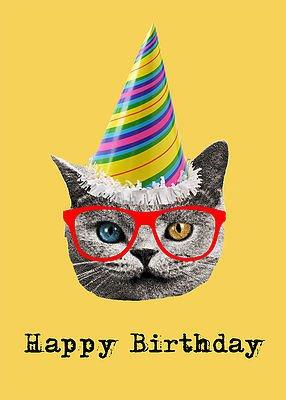 Junk Junk-Card-Birthday Cat