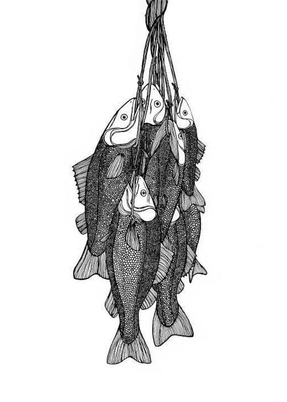 Kaila Erb Art&Illustration Kaila Erb-A Days Catch