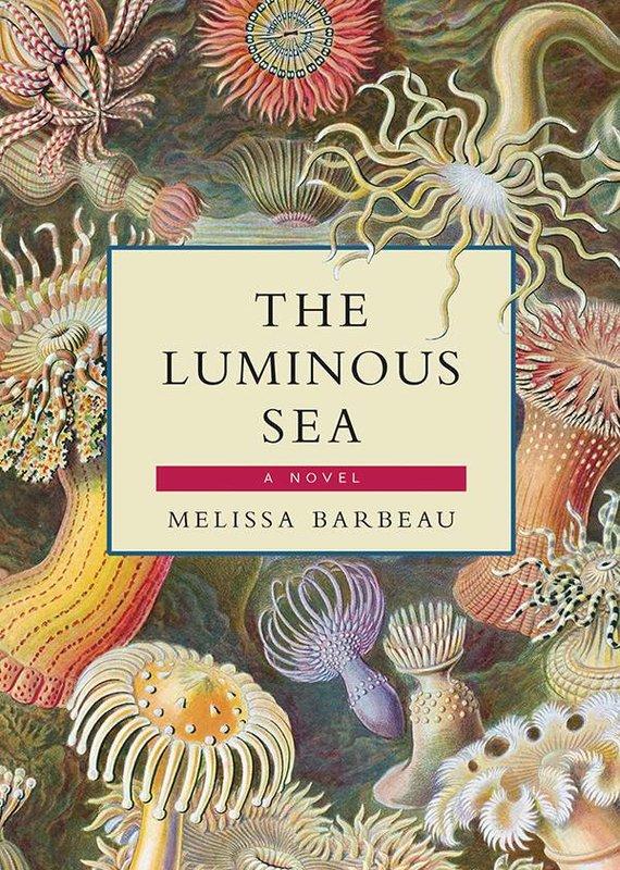 Breakwater Books Breakwater Books-The Luminous Sea