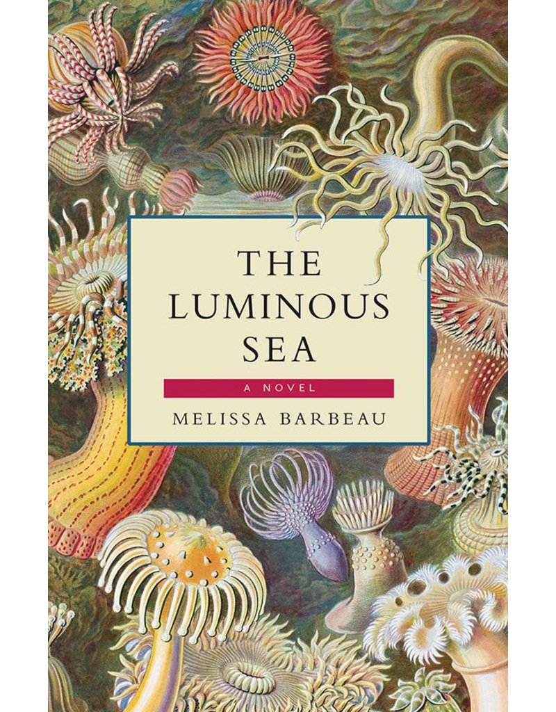 Breakwater Books Breakwater Books-The Luminous Sea