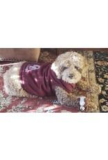 All Star Dogs Dog Sweatshirt