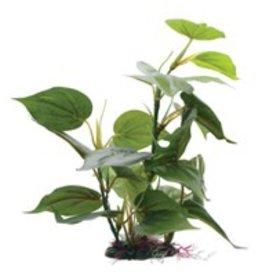 "Fluval Fluval Decorative Plants, Anubias, 30cm (12"") with Base"