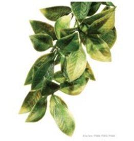 Exo Terra Exo Terra Jungle Plant - Mandarin - Medium