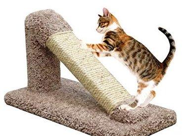 Cat Furniture & Scratching Posts
