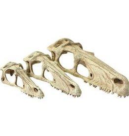 Komodo Komodo Raptor Skull Large