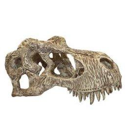 Komodo Komodo T-Rex Skull Small