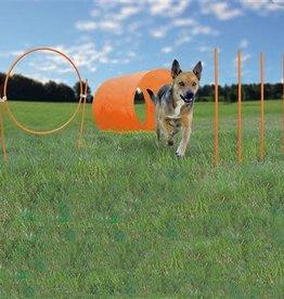 Petstages Petstages Zip & Zoom Outdoor Agility Kit