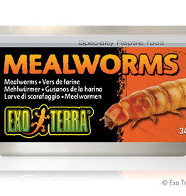 Exo Terra Exo Terra Mealworms Canned Food 34g