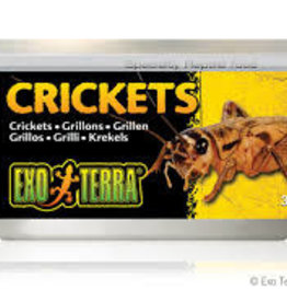 Exo Terra Exo Terra Crickets Canned Food 34g