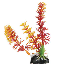 Underwater Treasures Underwater Treasures Cabomba - Red - 5""