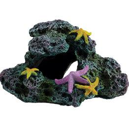 Underwater Treasures Underwater Treasures Reef Starfish Cave