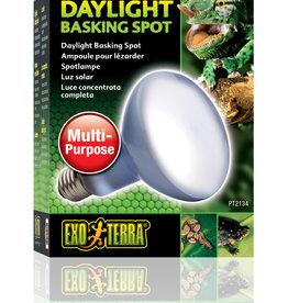 Exo Terra Exo Terra Daylight Basking Spot Lamp - R30 / 150 W
