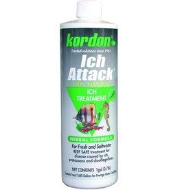 Kordon KORDON Ich Attack Disease Inhibitor 16oz