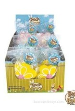 Bosco and Roxy's Bosco and Roxy's Hello Spring! Prepackaged Spring Flower 1pc