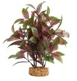 Fluval Fluval Aqualife Plant Scapes Broad Leaf Red Ludwigia - 25.5 cm (10 in)