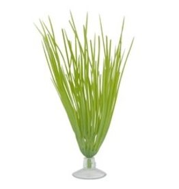"Marina Marina Betta Kit Hairgrass Plant With Suction Cup - 12.7 cm (5"")"