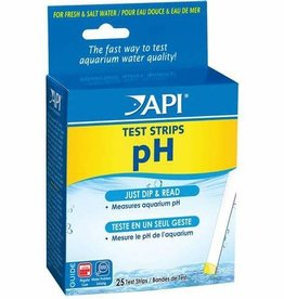 API API Test StripS PH