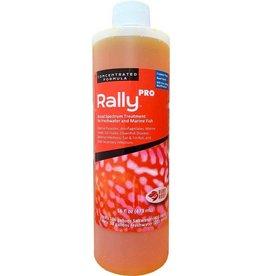 Ruby Reef Ruby Reef Rally Pro  Cylinder- 16 oz