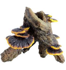 Underwater Treasures Underwater Treasures Root with Mushroom - medium