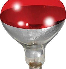 miller Miller Heat Bulb 250 Watts - Red