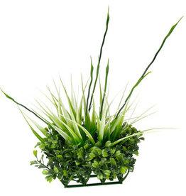 Fluval Fluval Chi Boxwood & Tall Grass Ornament