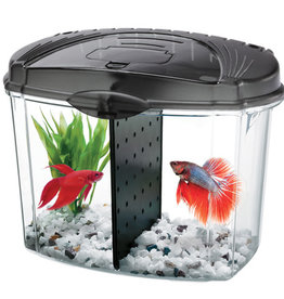 Aqueon Aqueon Betta Bowl Aquarium Kit - Black - 0.5 Gal