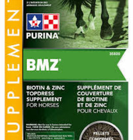 Biotin - Hoof and Hair Supplement for Horses