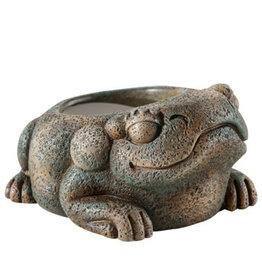 Exo Terra Exo Terra Aztec Frog Water Dish - 40 ml