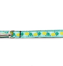 RC Pets RC Pets Kitty Leash 6ft. Pineapple Parade