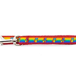 RC Pets RC Pets Kitty Leash 6ft. Rainbow Paws