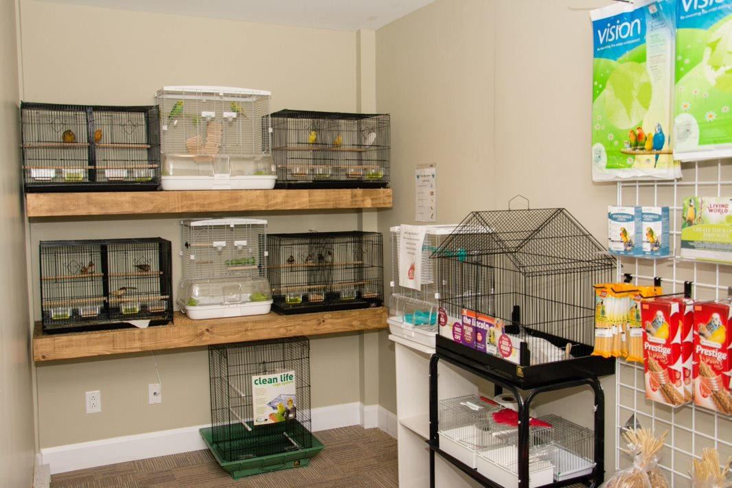Bird Room Cages